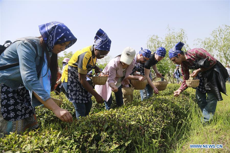 Foreign students experience Chinese tea culture